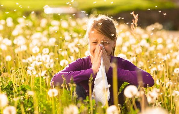Hay Fever in Spain